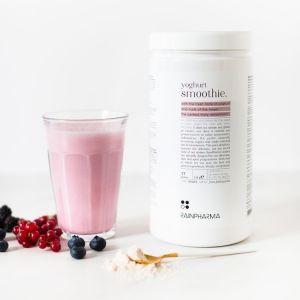 Yoghurt Smoothie 510 gram